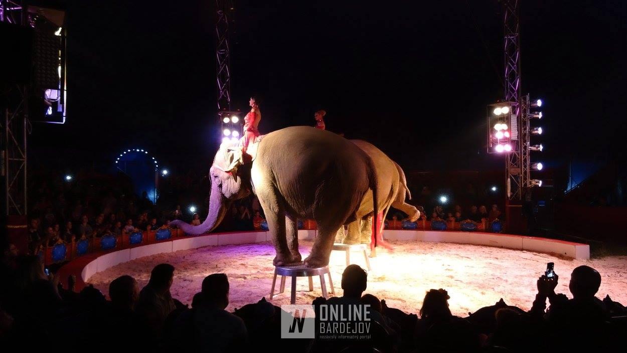 Cirkus ALEŠ prilákal Bardejovčanov pod šapitó!