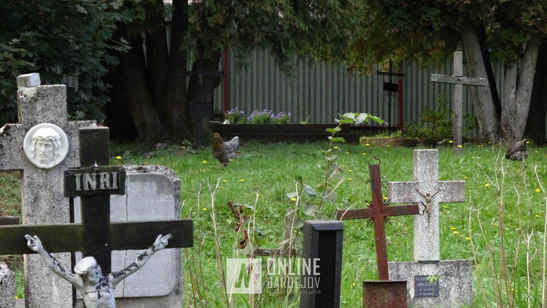 Po hroboch na Cintoríne sv. Jakuba stále behajú sliepky zo susedného dvora