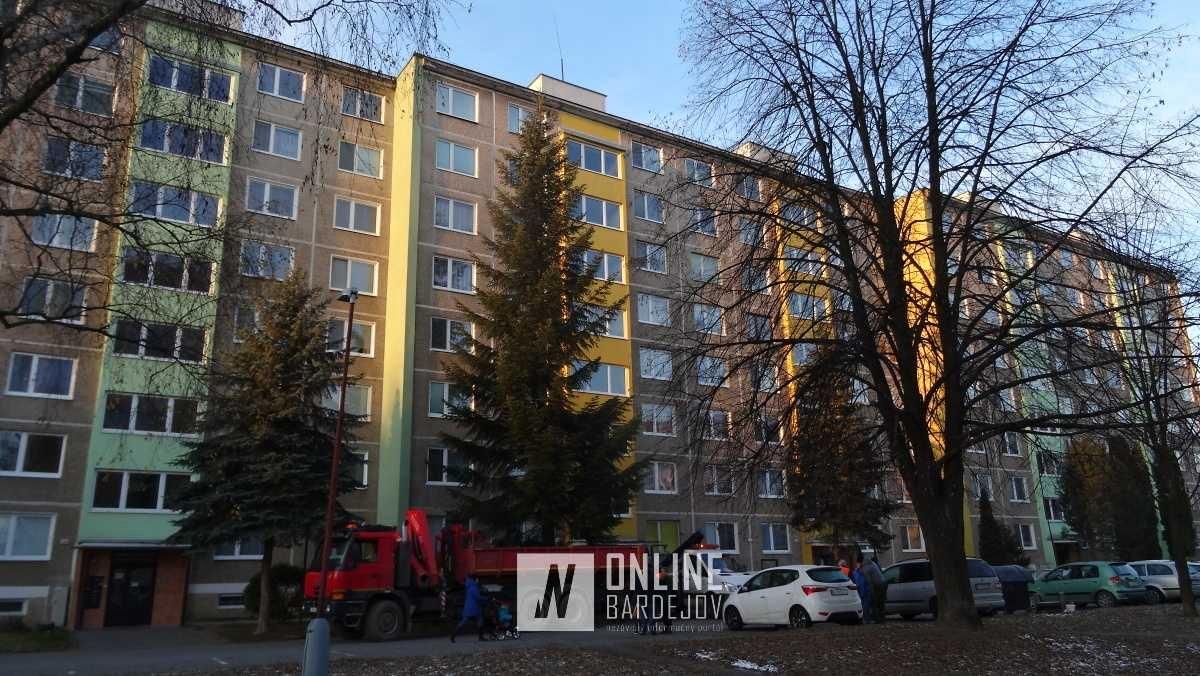 Vysoký strom rástol v tesnej blízkosti bytovky.